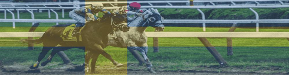 horse racing odds.se