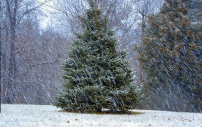 snö på julafton